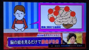 ホンマでっか-脳-2