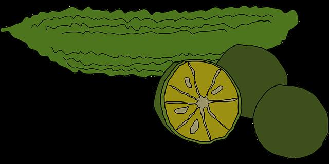 趣味どき カラダ喜ぶベジらいふ 第3回苦味らいふ ゴーヤーレシピ