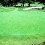 趣味どき 今どきっ!ゴルフ第8回「スコアアップの奥義」NHKEテレ
